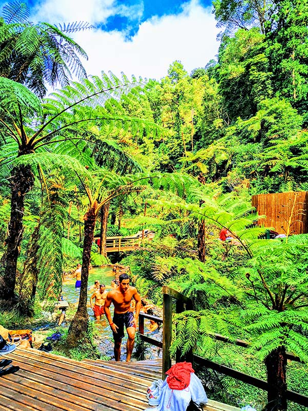 San Miguel Island Tour